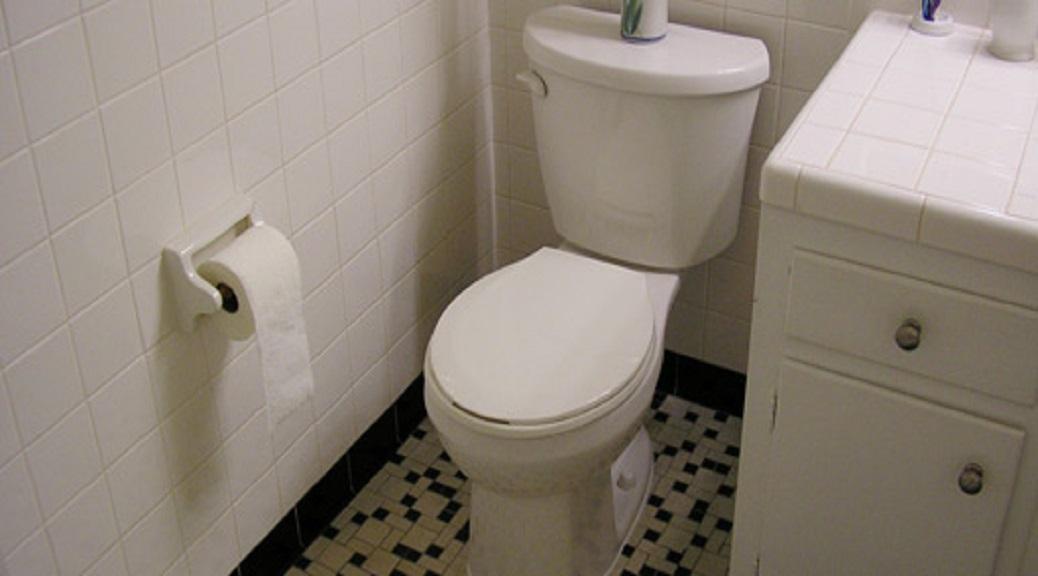 Dreams of BathroomPrivacy